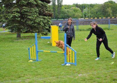 Seminarium agility